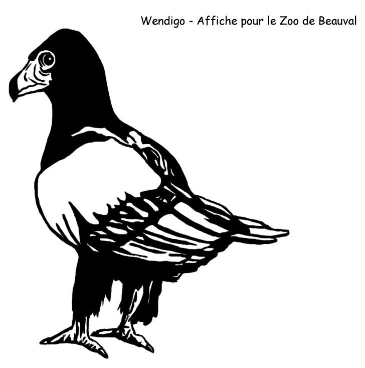http://mwendigo.online.fr/Dessin/Beauval%20-%20Oiseau%2001.jpg