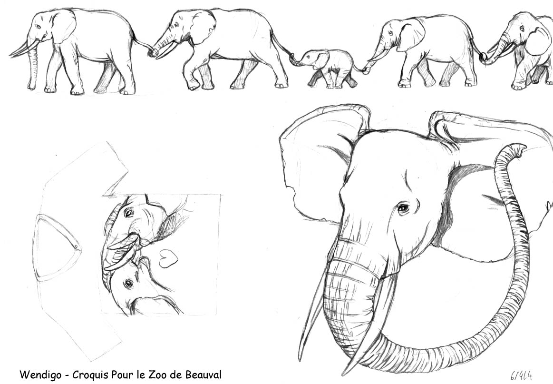 comment dessiner elephant